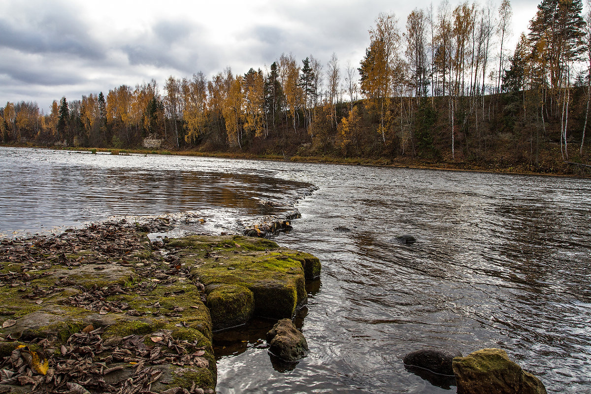 Река Мста сплавы на байдарках. Порог 8. Порог Большой летом